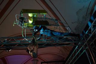 Выставка «Мир акул: глубокое погружение»